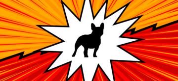 Bulldogjob Beta - czyli nowa, zoptymalizowana odsłona portalu