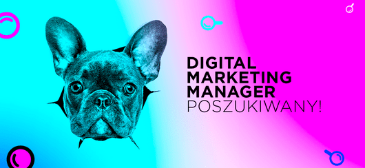 Digital Marketing Manager - praca